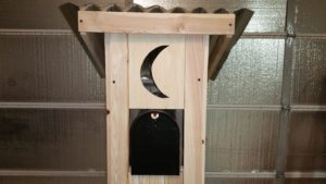 custom project, mailbox stand, outhouse, mailbox holder, customized stand